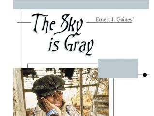 The Sky Is Gray