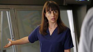 Grey's Anatomy: Walking on a Dream