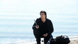 The Vampire Diaries: Into the Wild