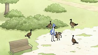 Regular Show: A Bunch of Full Grown Geese