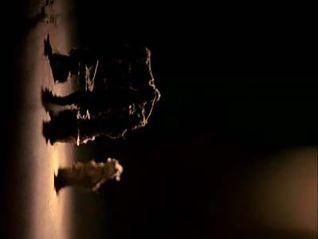 CSI: Crime Scene Investigation: Who Are You?