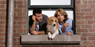 Mad About You [TV Series]