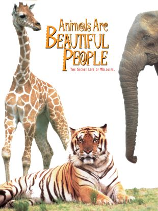 Animals Are Beautiful People