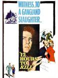 Twelve Hours to Kill