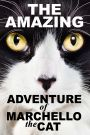 The Amazing Adventure of Marcello the Cat