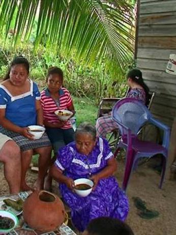 Bizarre Foods With Andrew Zimmern: Taste of the Tropics