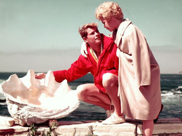 a summer place 1959 delmer daves review allmovie