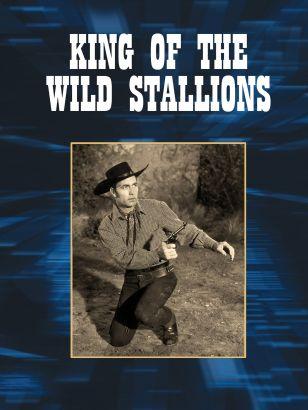 King of the Wild Stallions