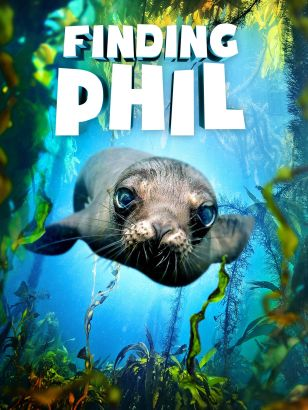 Finding Phil