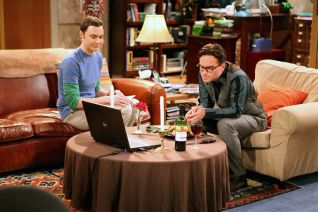 The Big Bang Theory: The Infestation Hypothesis