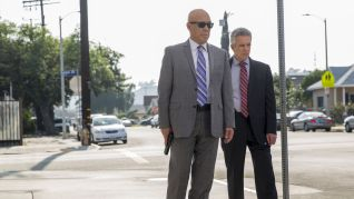 Major Crimes: Targets of Opportunity