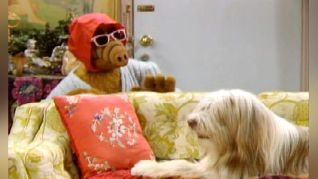 ALF: You Ain't Nothin' But a Hound Dog