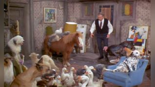 Green Acres: It's Human to Be Humane