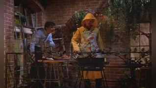 Dharma & Greg: Like, Dharma's Totally Got a Date