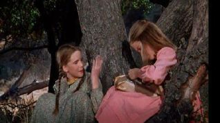 Little House on the Prairie: The Gift