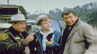 Murder, She Wrote [TV Series]