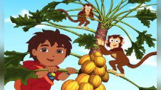 Go Diego Go!: To Babysit a Bobo
