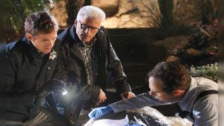 CSI: Crime Scene Investigation: Fearless