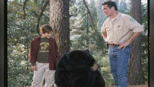 Gentle Ben 2: Danger on the Mountain