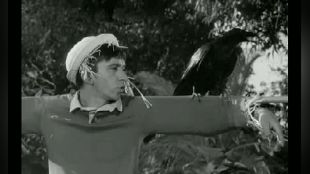 Gilligan's Island: The Sound of Quacking