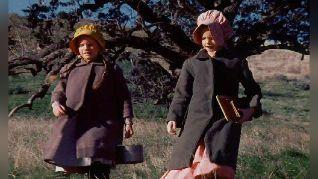 Little House on the Prairie: The Award