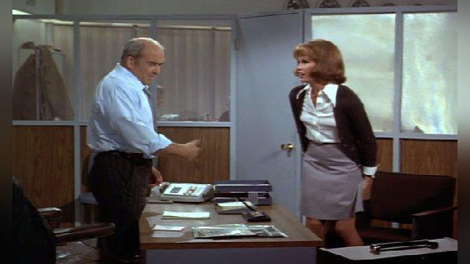 The Mary Tyler Moore Show: The Lou and Edie Story