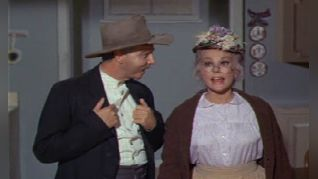 Green Acres: The Beverly Hillbillies