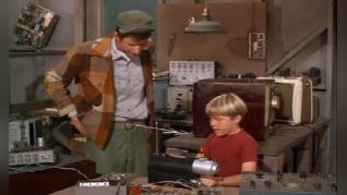 Green Acres: How to Succeed on TV Without Really Trying