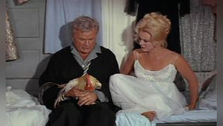 Green Acres: My Husband, the Rooster Renter