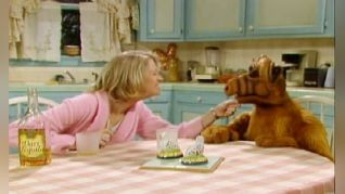 ALF: Tequila