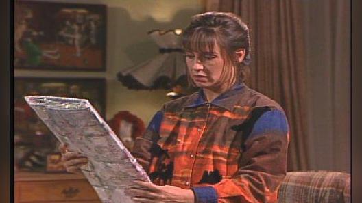 Roseanne: It Was Twenty Years Ago Today