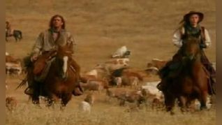 Dr. Quinn, Medicine Woman: Cattle Drive