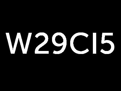 W29CI5 Logo