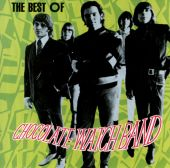 The Best of the Chocolate Watch Band