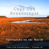 Cape Cod Soundscapes, Vol. 10: Song Birds on the Marsh
