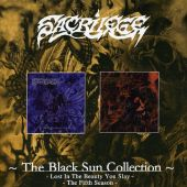 The Black Sun Collection: Lost in the Beauty You Slay/The Fifth Seaso