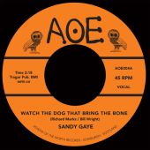 Watch the Dog That Bring the Bone