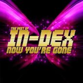 Best of In-Dex: Now You're Gone