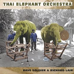 David Soldier - Thai Elephant Orchestra