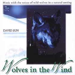 David Sun - Wolves in the Wind