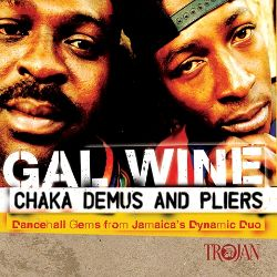 Gal Wine: Dancehall Gems from Jamaica's Dynamic Duo