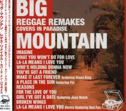 Big Mountain - Reggae Remakes: Covers in Paradise