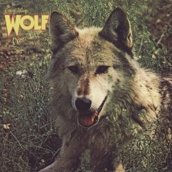 Canis Lupus (Wolf)