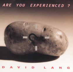 David Lang: Are You Experienced?