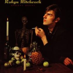 Groovy Decay - Robyn Hitchcock