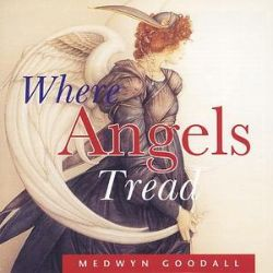 Medwyn Goodall - Where Angels Tread