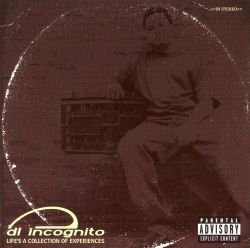 Life's a Collection of Experiences - DL Incognito