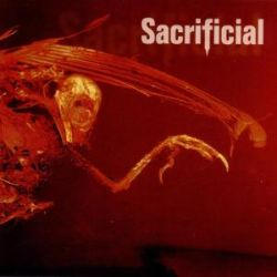 Sacrificial - Auto Hate