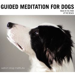 Satori Dog Institute - Guided Meditation for Dogs