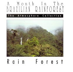 A Month in the Brazilian Rainforest: Rain Forest
